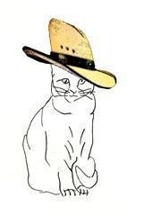 Cowboy hat cat 2