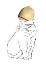 Pith Helmet Cat 6