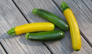 Yellow and green zucchini_reduced image