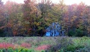 Autumn 2013.crp