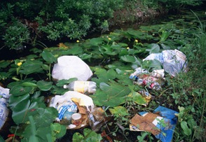 litter-and-garbage-dumped-in-wetland-area-among-water-lilies-and-marsh-plants