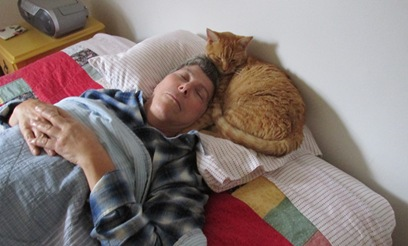 11. Fuzzbee and Jannie napping Oct. 20, 2014