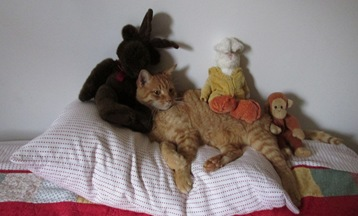 12. Fuzzbee and playmates Oct. 20, 2014