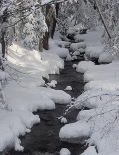 Snow 1