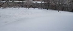 3. Backyard snow